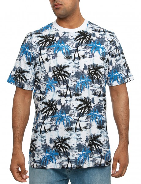 Dickies Honolulu T-Shirt 06 210338 Blue
